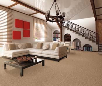 Carpet Flooring Lansing MI